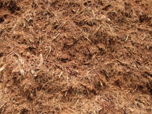 Premium Red Oak Mulch